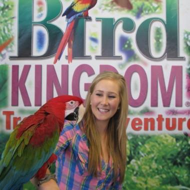 Bird Kingdom Niagara Falls - Macaw - Parrots - Aviary